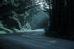 Dunkler Wald mit leerer Straße im Zurücktretenlicht Stockbild