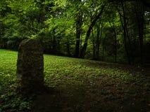 Dunkles, klares Grün, atmosphärischer Wald mit stehendem Stein stockbild