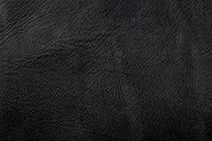 Dunkles Leder Lizenzfreie Stockbilder