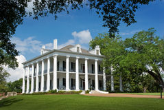 Dunleith Southern Mansion royalty free stock images