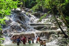 Dunn ` s河秋天是瀑布在Ocho里奥斯在牙买加,可以由游人攀登 免版税库存照片