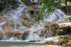 Dunn's River Falls Jamaica Royalty Free Stock Images