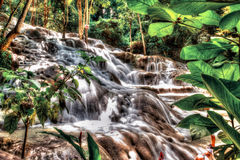 Dunn`s River Falls in Jamaica. Dunn`s River Falls in Rio Ocho - Jamaica Stock Photos