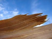 Dunne houten breuk tegen de hemel royalty-vrije stock fotografie