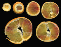 Dunne plakken van sinaasappel Royalty-vrije Stock Afbeelding
