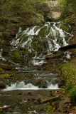 Dunnings Springs Waterfall Royalty Free Stock Photo