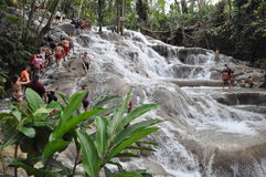 Dunns河在Ocho里奥斯,牙买加落 库存照片