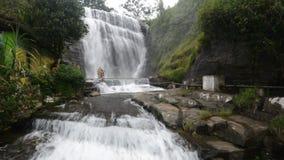 Dunsinane nedgångar, Sri Lanka stock video