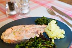 Dunst lagad mat lax Fotografering för Bildbyråer