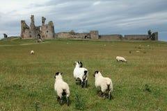 Dunstanburgh kasztelu widok Fotografia Stock