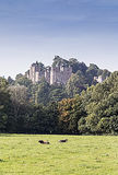 Dunster Castle in Somerset England Royalty Free Stock Image
