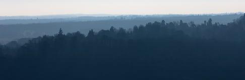 Dunstige Bäume auf dem Horizont Stockfotos