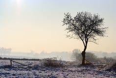 Dunstige Winterlandschaft Lizenzfreies Stockfoto