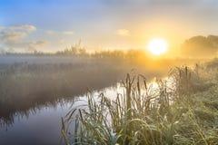 Dunstiger Sonnenaufgang über Fluss im niederländischen countriside lizenzfreie stockfotos