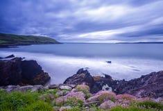 Dunworley, Co.Cork, Ирландия Стоковое Изображение RF