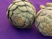 Duo of Artichokes. On a Purple cloth royalty free stock photos