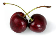 Duo of cherries Royalty Free Stock Photo