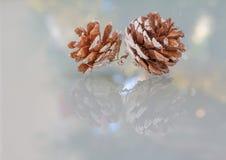 Duo collegato delle pigne con le riflessioni colourful e festive di stagione Immagini Stock