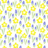 Duo early spring flowers blooming. Vector seamless colourful simple repeating pattern with freehand drawing floral motifs on the white background Stock Image