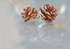 Duo relié des cônes de pin avec des réflexions colorées et de fête de saison Images stock