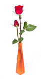 Duo Rose in the Vase Royalty Free Stock Photography