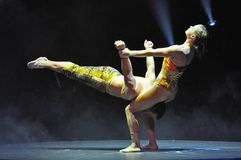 Performers in circus royalty free stock image