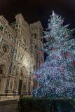 Duomo и дерево Стоковая Фотография
