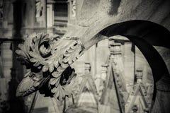 Duomo cathedral of Milan - detail Stock Photo