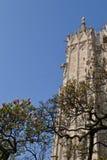 Duomo delle pareti esterne di Milano nella primavera con i fiori della magnolia immagini stock libere da diritti
