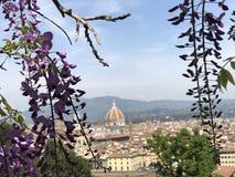 Duomo a Firenze Immagini Stock