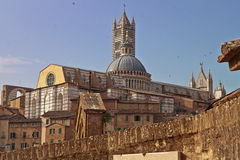 The Duomo of Siena Royalty Free Stock Photography
