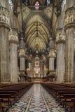 Duomo van Milaan, (de Kathedraal van Milaan), Italië Stock Foto