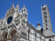 Duomo van Siena Stock Afbeelding