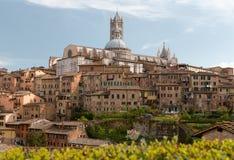 Duomodomkyrka av Siena på solig vårdag italy tuscany Arkivfoton