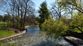 The DuPage River Royalty Free Stock Photography
