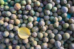 Duperreanum asiatique de Dracontomelon de fruit tropical Le populaire de fruit utilisé pour faire cuire la soupe aigre au Vietnam images stock