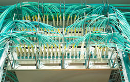Duplex fiber optic patch cable Royalty Free Stock Images