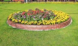 Duplex flowerbed on a lawn. Landscape Design - duplex flowerbed on a lawn Royalty Free Stock Photography