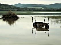 Duplicando - coche agrícola en un área de inundación, cerca a Rudolstadt, Thuringia, Alemania fotografía de archivo