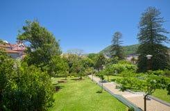Duque do jardim de Terceira, Angra, Terceira, Açores Foto de Stock
