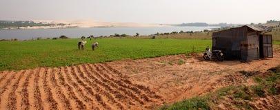 Durée d'agriculture image stock