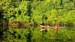 Durée dans la jungle d'Amazone (l'Amazonie) images stock