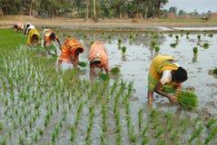 Durée indienne de village Image stock