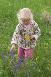 Durée rurale Photographie stock