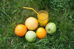 Durée saine Jus et fruits frais sur l'herbe verte image libre de droits