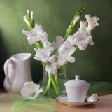 Durée toujours avec des fleurs de gladiolus Photographie stock