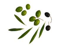 Durée toujours avec des olives Photographie stock