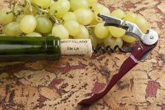 Durée toujours avec des raisins Photo stock