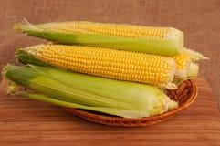 Durée toujours avec du maïs Photographie stock