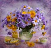 durée toujours avec les camomiles lilas Photographie stock libre de droits